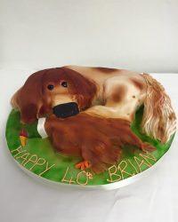 dog-pheasant
